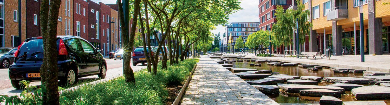 Planten vakken naast het stedelijk vormgeven water in de Roombeek, Enschede.
